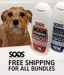 anti itch dog shampoo